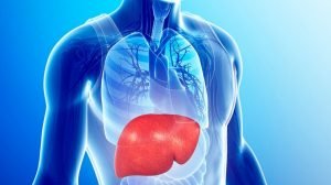 Novos tratamentos para a hepatite C possibilitam o transplante de rins mesmo que contaminados